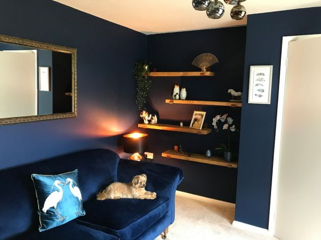 dark blue sitting room